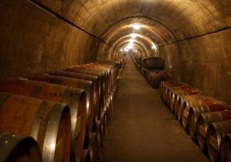 История мускатных вин